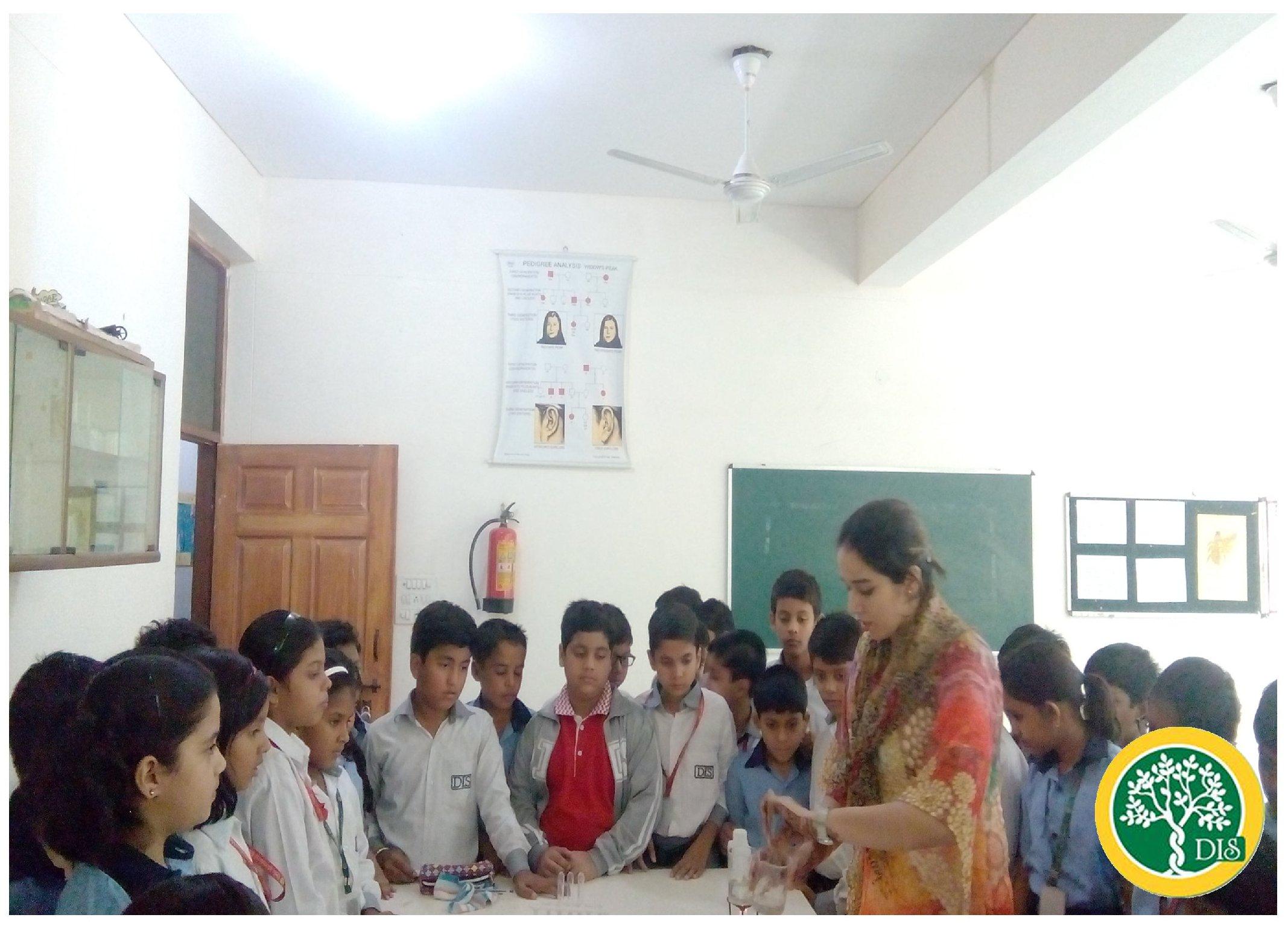 Life at DIS School Dwarka - 2
